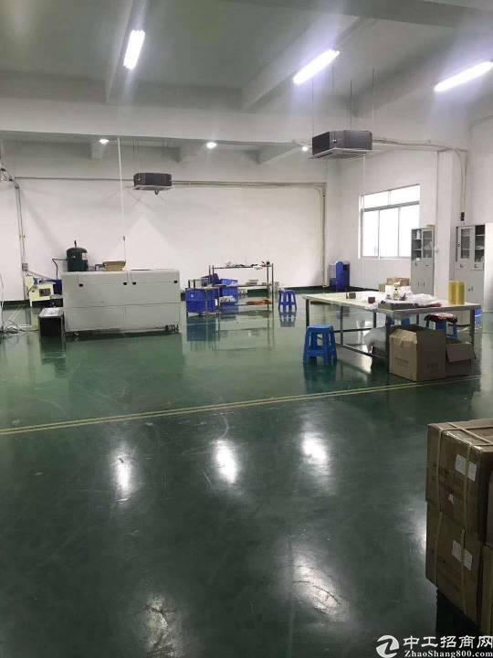 公明李松蓢大型工业园楼上厂房出租