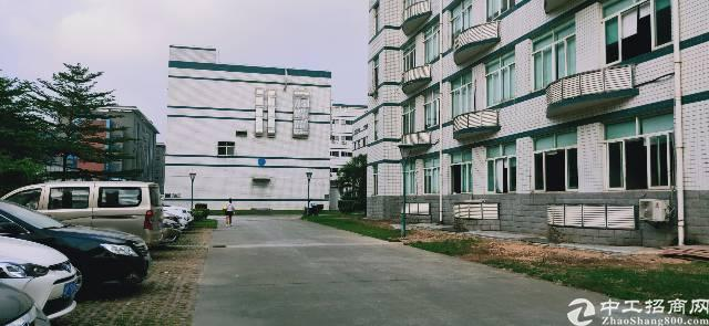 福永地铁口旁厂房改造写字楼出租大小可分价格优惠图片7