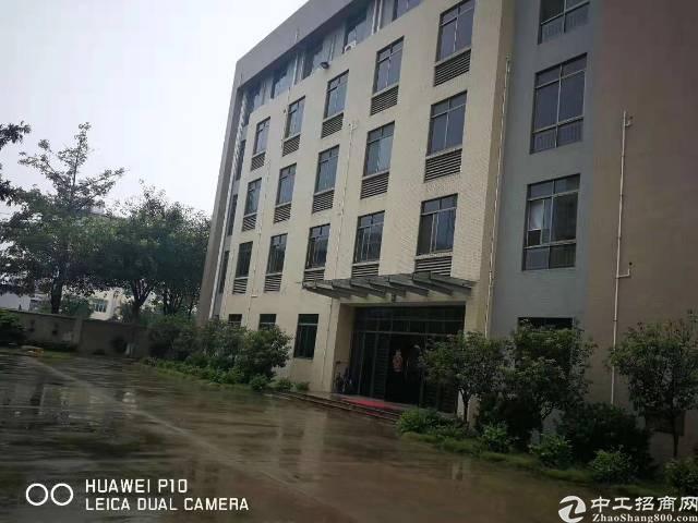 坂田雪象雪岗北路华为基地旁新出一楼800平方可分租