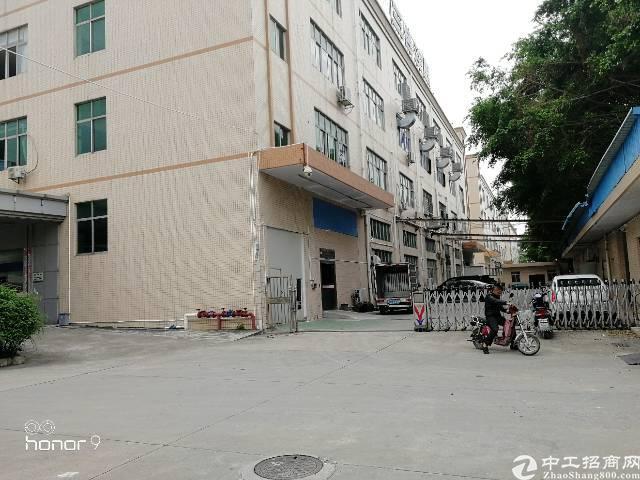 福永和平大型园区一楼800平方水电齐全-图3