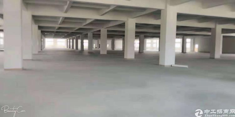 清溪镇新出标准厂房三楼7800平方