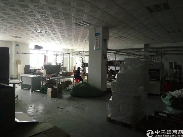 平湖三楼500平米有现成装修办公室!有电梯-图3