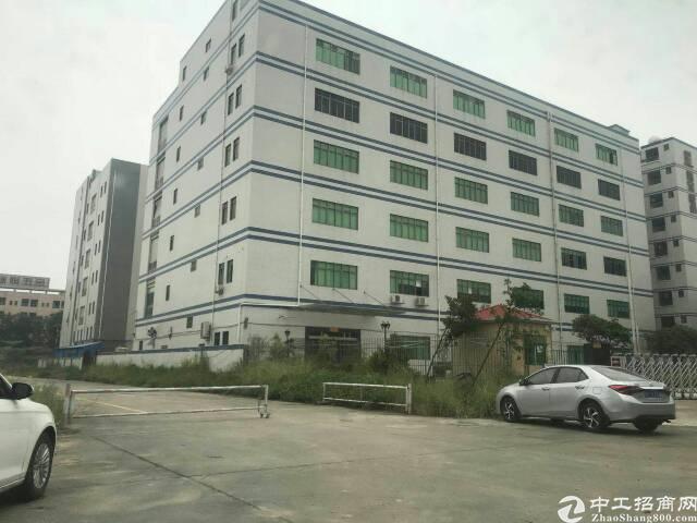 大朗新出厂房10000平,交通方便有无尘车间