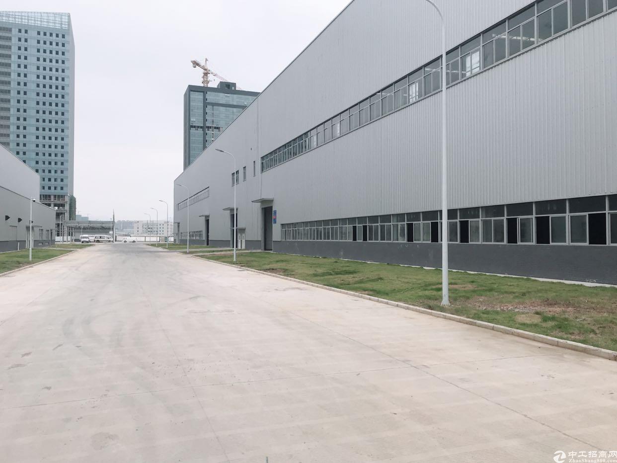 坪山坑梓新出8000平滴水15米重工业钢结构厂房630电
