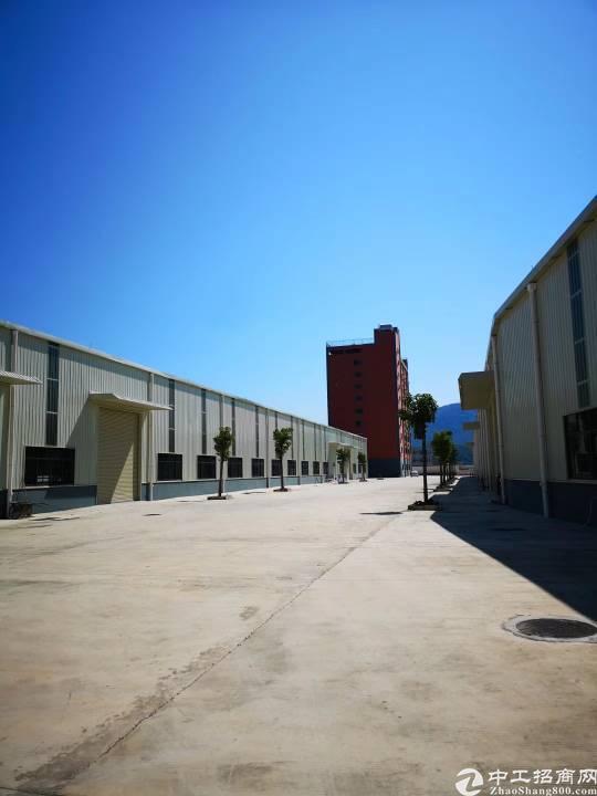 全新滴水10米单一层厂房12500方,场内两条20米宽通道,