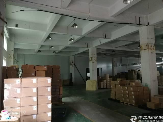 福永和平大型园区一楼800平方水电齐全