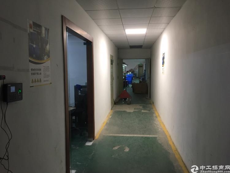 福永稔田原房东独门独院精装修厂房800平招租-图7