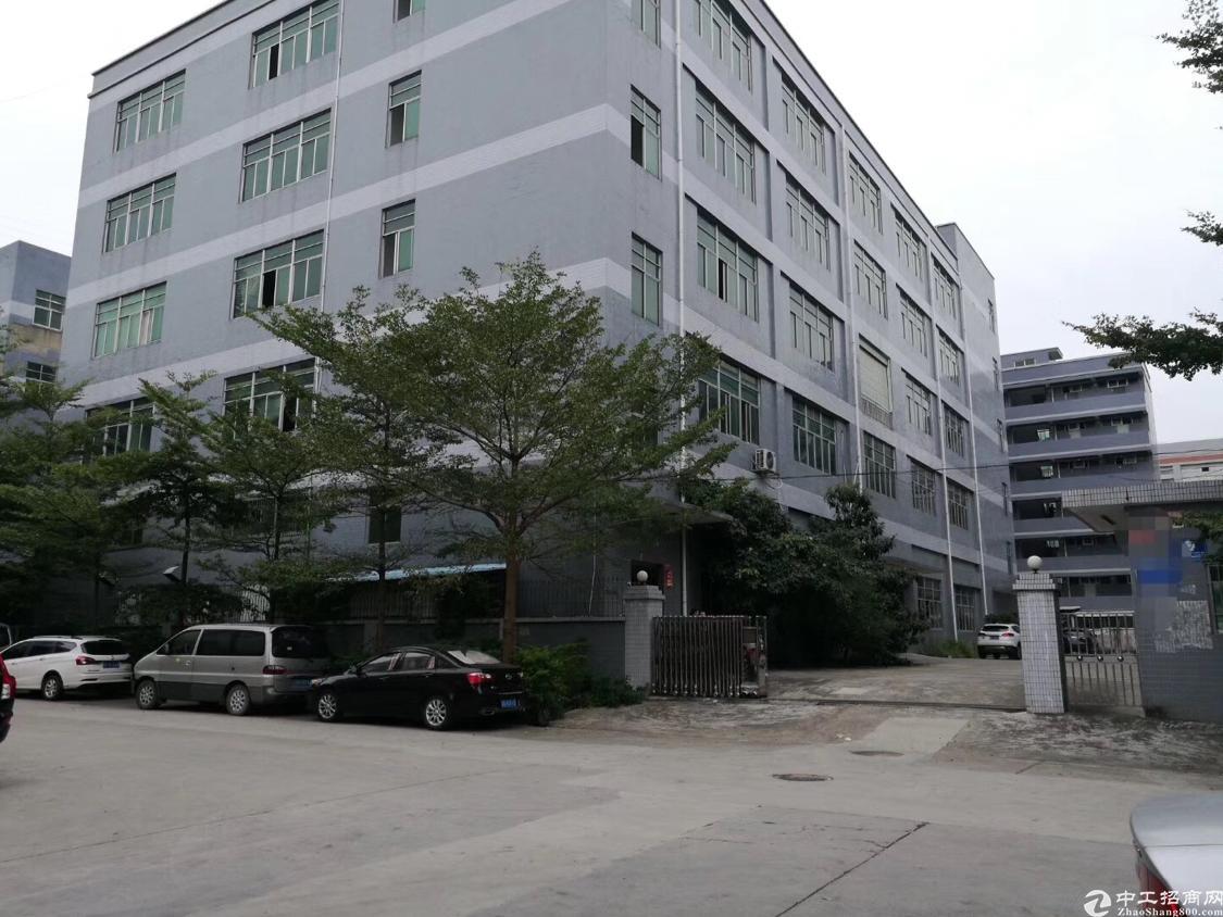 新出原房东标准厂房11000平方米
