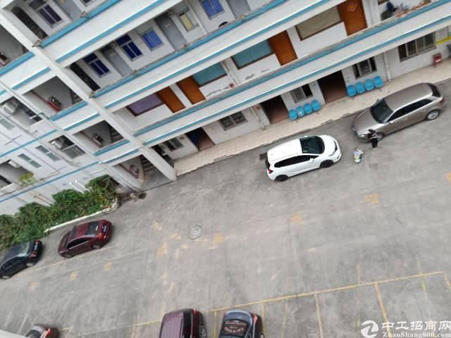 平湖广场旁新出单独一层带装修厂房出租