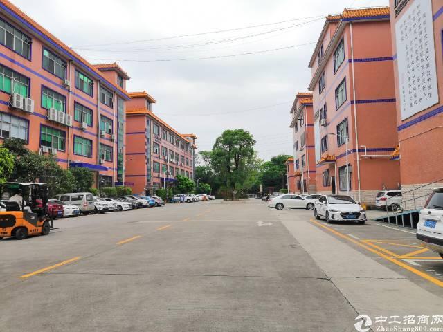 大朗镇新出独院标准厂房招租 厂房1-3层 13500平方