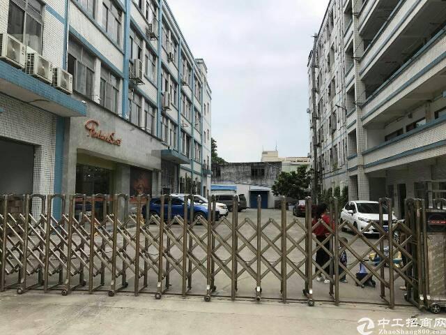 平湖华南城2060平米三楼有办公室装修!环境好!-图2