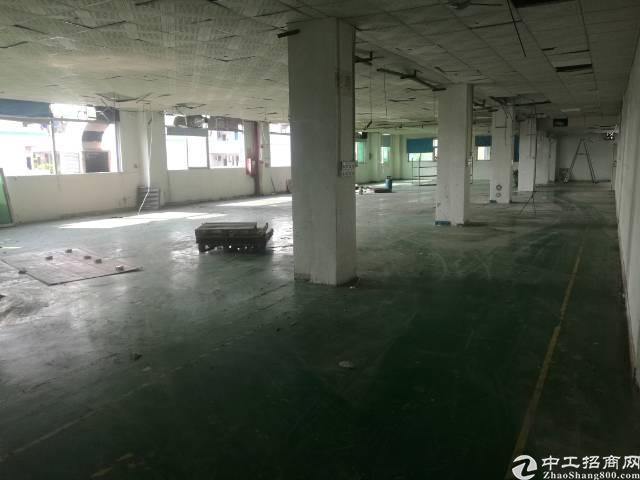 福永 凤凰3楼厂房1350平方带装修不要转让费-图2