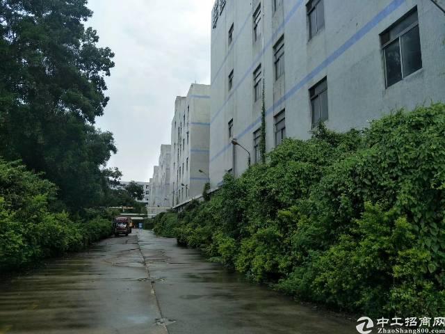 布吉1000平红本带消防喷淋卸货平台5吨货梯厂房招租