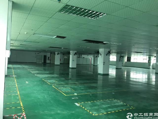 福永地铁11号线独门独院厂房半层带装修大小可分