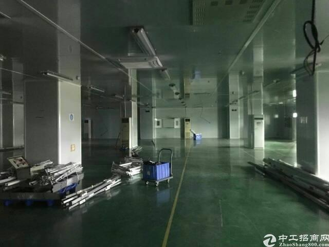 现成无尘车间厂房2000平