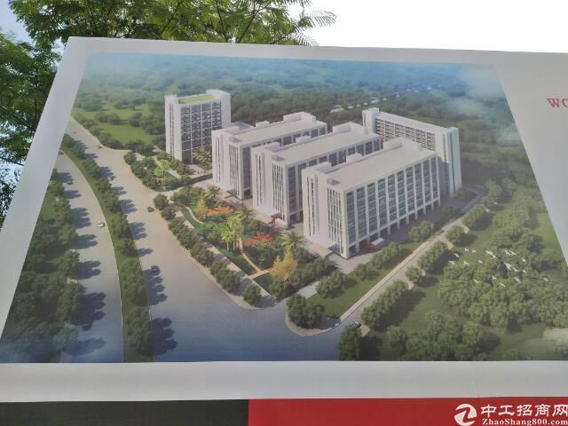 东部快线边上原房东全新独院高大上标准式带独立办公楼和齐全证件