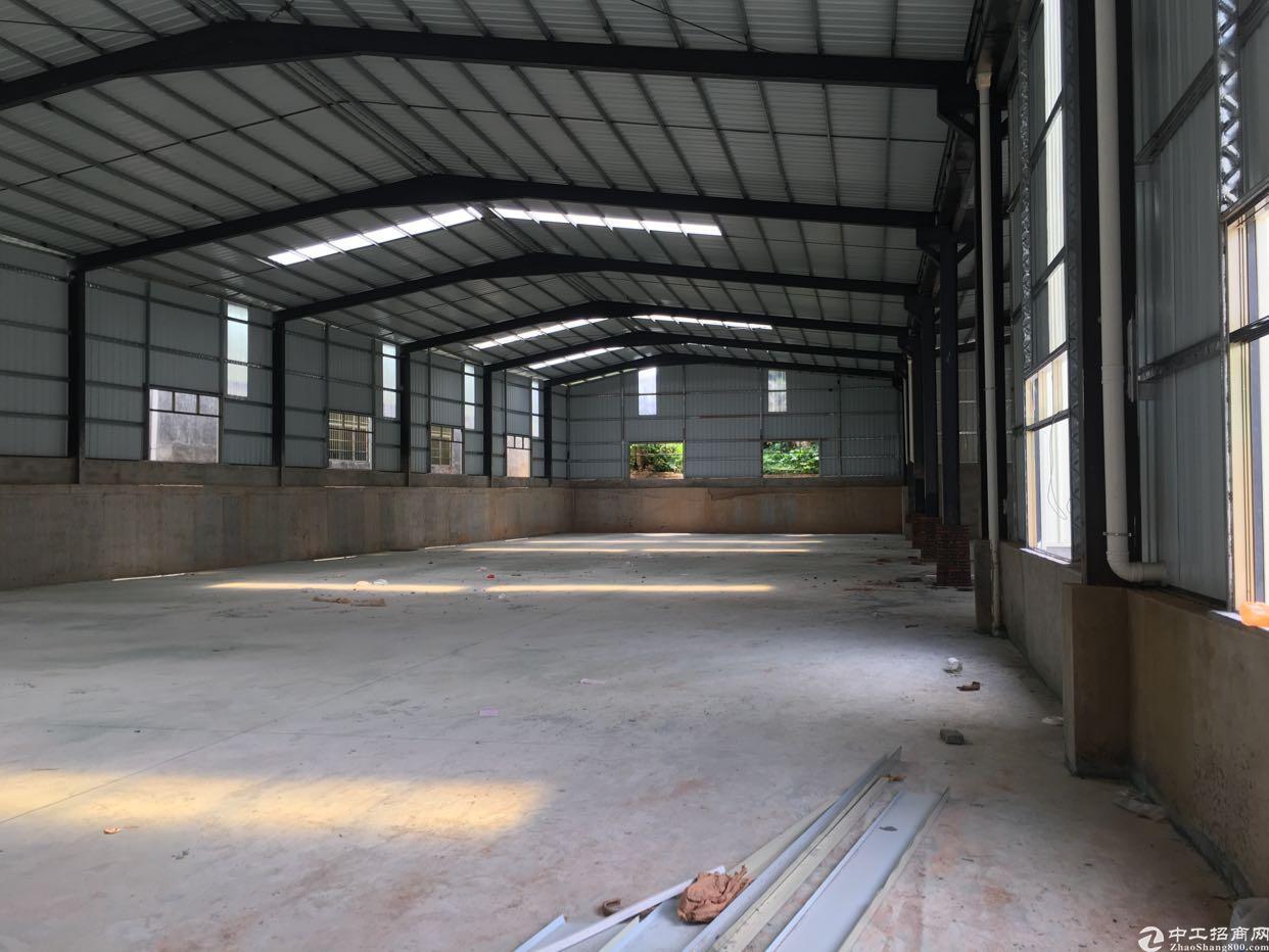大朗原房东全新单一层钢结构厂房1500平方米招租