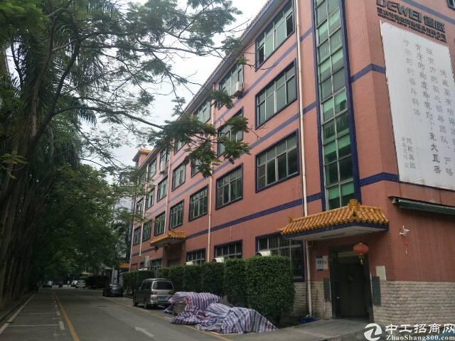 新出独院标准厂房1-4层5400平米单一层1350平米,一楼