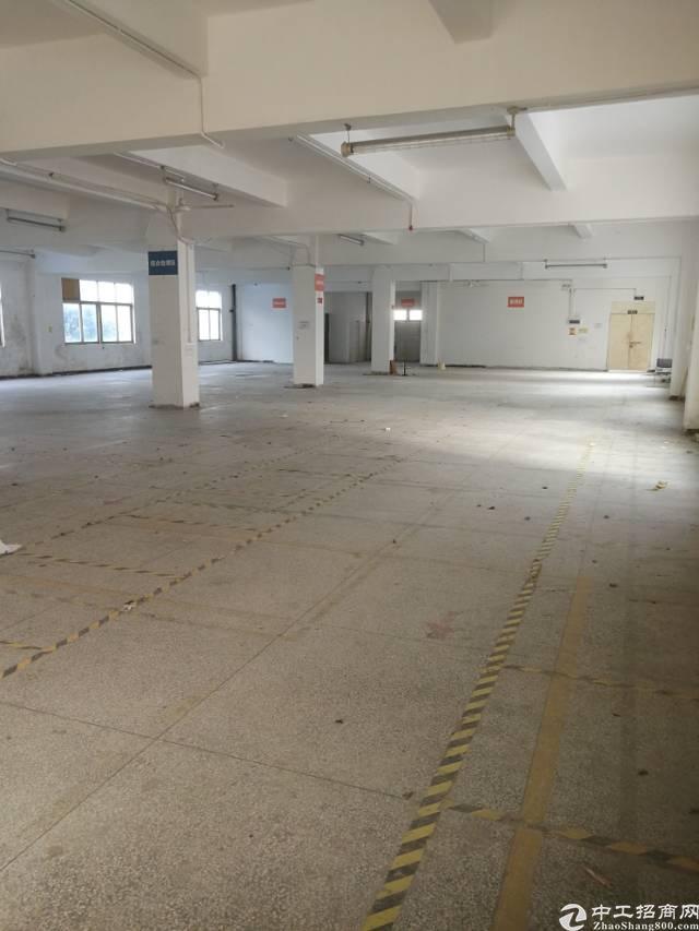 横岗六约一楼面积800平米厂房招租