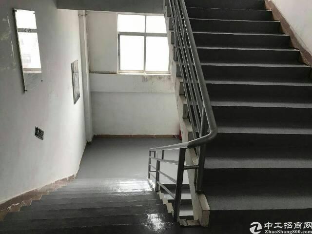 平湖华南城2060平米三楼有办公室装修!环境好!-图4