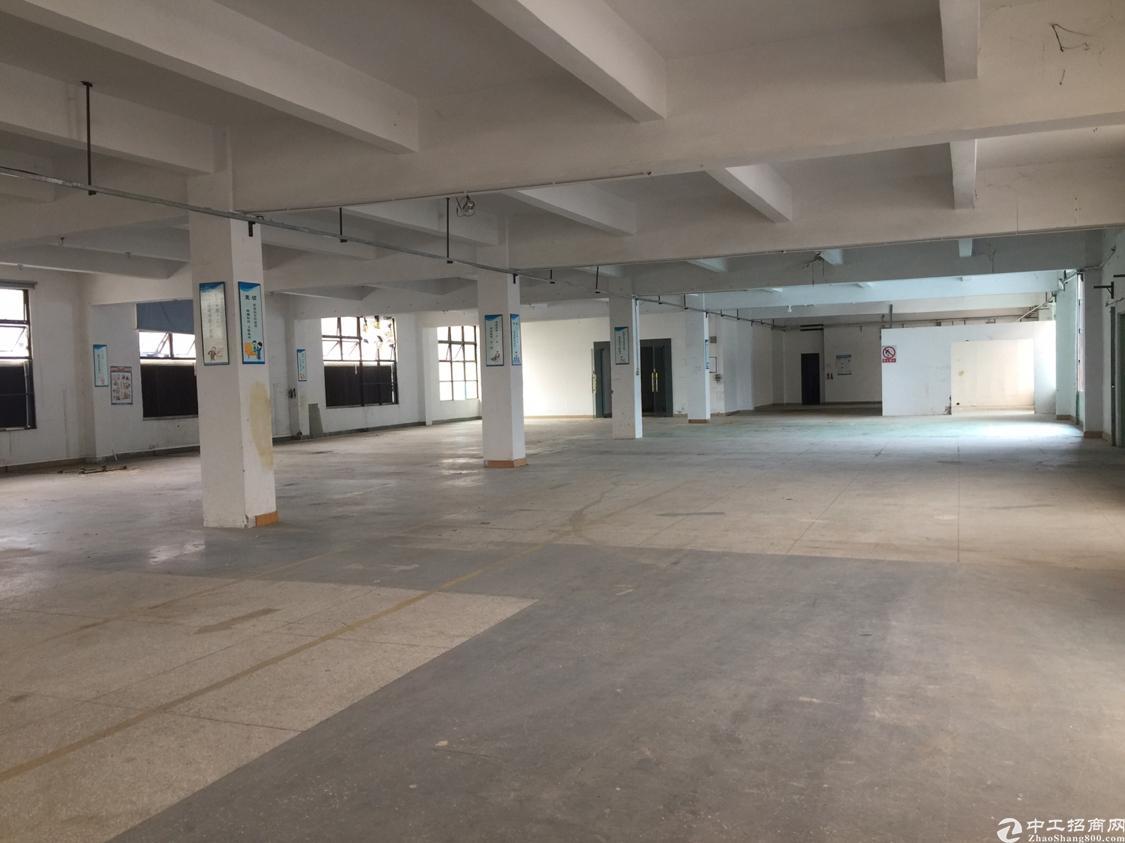 平湖一楼厂房2100平方米出租使用率80%-图2