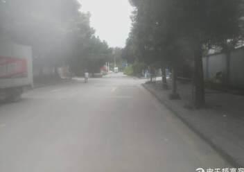 平湖新出工业园带红本600平米厂房招租,可分租,已过消防!图片1