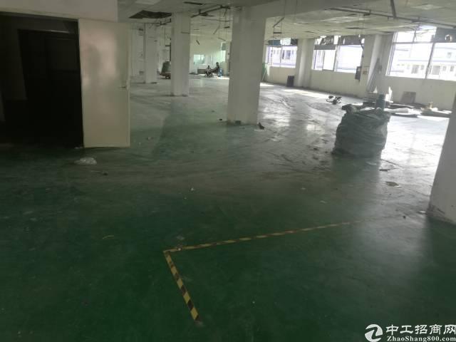 福永 凤凰3楼厂房1350平方带装修不要转让费-图5