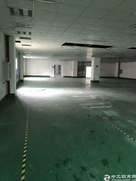 横岗六约塘坑新出楼上500平米带装修厂房出租