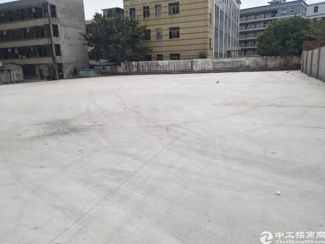 福永凤凰空地2000平低价出租