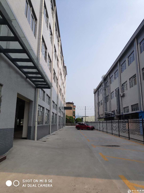新出标准厂房一楼1300平方米