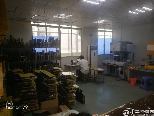 松岗松福大道边新出厂房空出标准厂房850平米,车间带地坪漆,