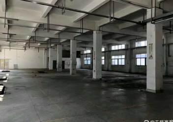 坪山新区4200平独栋厂房图片2
