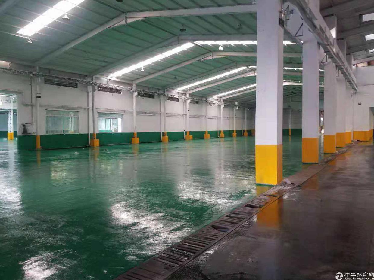 塘厦大坪高速出口新出24500平方物流园仓库