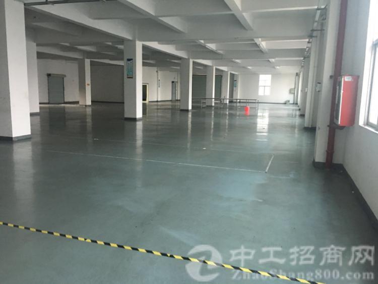茶山空出精装修厂房2000方,水电齐全,搬进去可生产