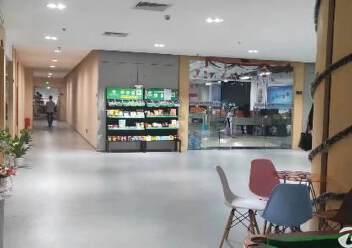 平湖大望工业区带精装办公室厂房楼上2000平方急租图片7