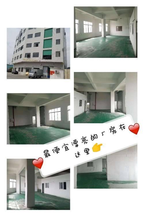 向东全新厂房分租楼上420平米带装修办公室水电齐全
