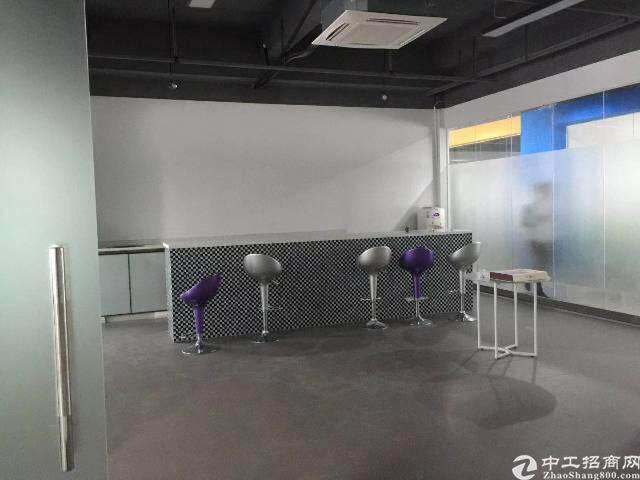 出租龙华观澜甲级科技园  1600平 可分租图片8