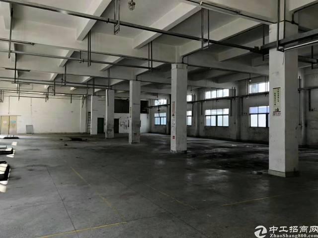 坪山原房东6000平米独院厂房出租-图3