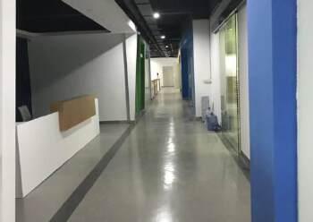 出租龙华观澜甲级科技园  1600平 可分租图片5