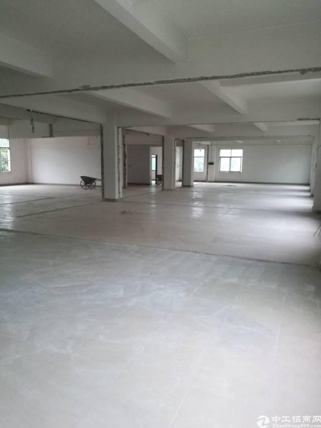 高埗镇冼沙村附近大型工业园区现分租二楼标准厂700平方!
