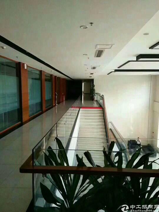 平湖原房东电商产业园三楼2600平米带豪华装修出租可分租急-图2