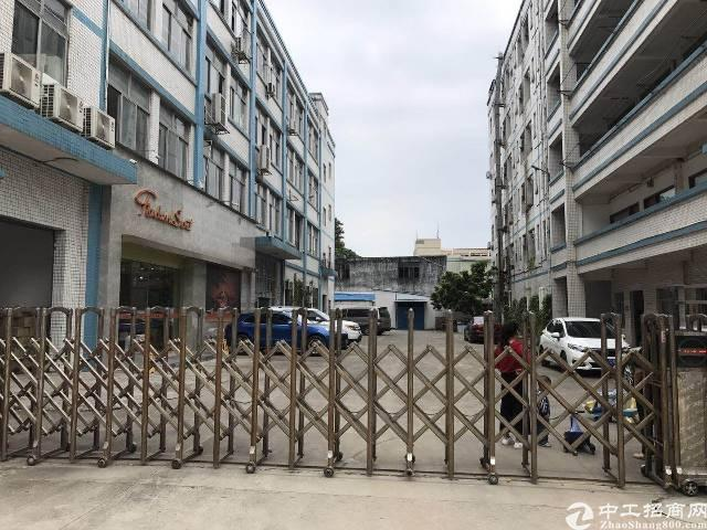 平湖新出带红本一楼500平米厂房招租!已过环评,适合各种行业