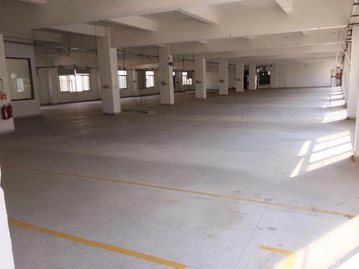 龙岗嶂背圆湖路新出原房东2楼800平标准厂房