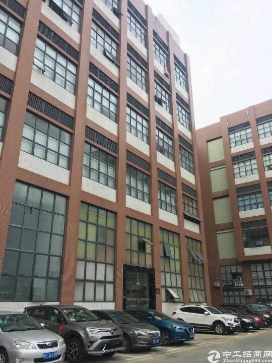 1000平方米带豪华办公室装修厂房出租