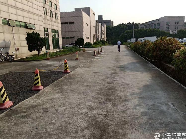 平湖新出独院厂房5000平招租-图3