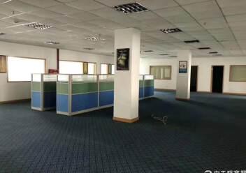 坪山新区4200平独栋厂房图片4