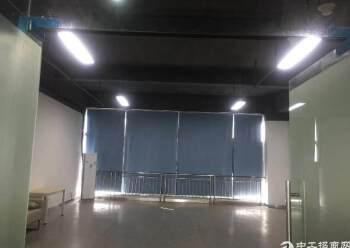 出租龙华观澜甲级科技园  1600平 可分租图片6