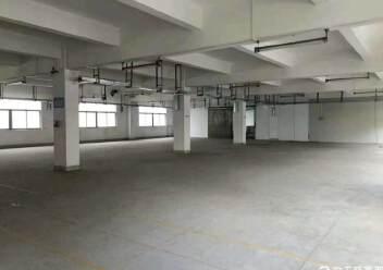 坪山新区4200平独栋厂房图片3