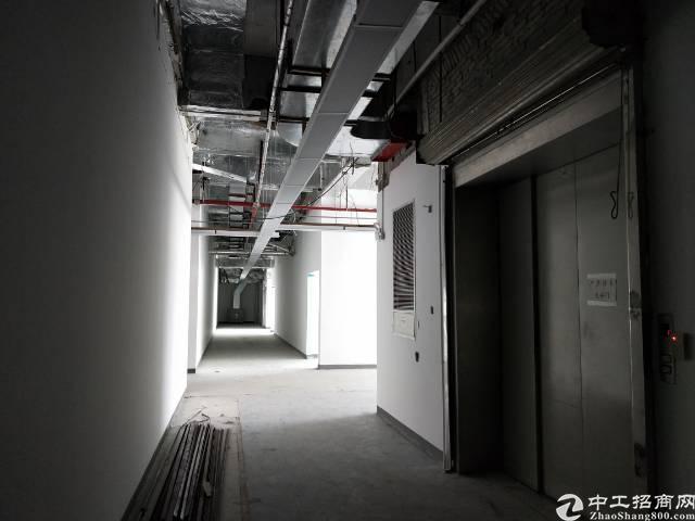 桃源居附近小面积高新研发科技楼全面招租。