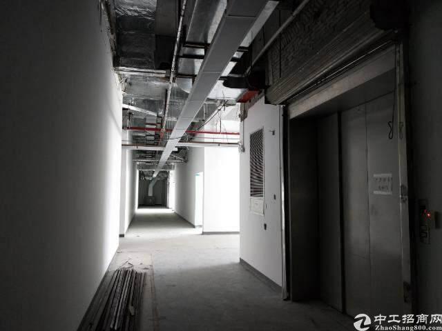 桃源居200至6000平米厂房价高新研发楼图片3